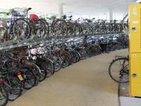 Mit Dem Fahrrad In Freiburg